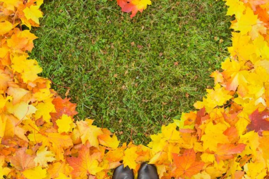 Ljubavni horoskop za 4. oktobar: Ovo je srećan period za sledeće znakove