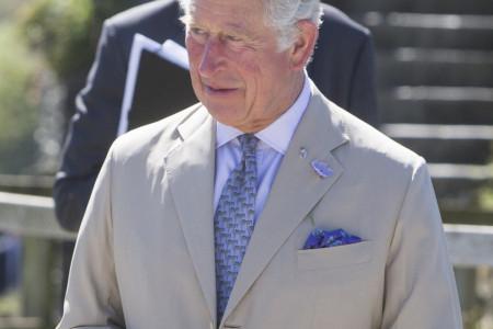 Bolest ponovo stigla u Bakingemsku palatu: Princ Čarls očajan, ne želi da i nju izgubi