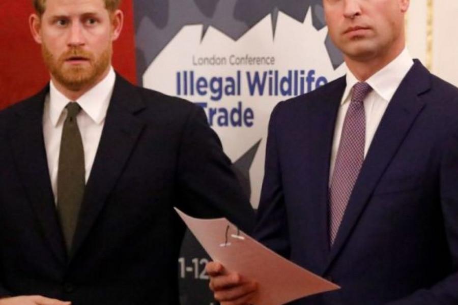 Prinčevi Vilijam i Hari: Laž je da među nama postoje nesuglasice!