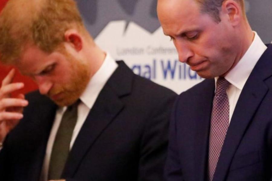 Princ Vilijam: Ceo život sam podržavao brata i štitio sam ga, ali više ne mogu