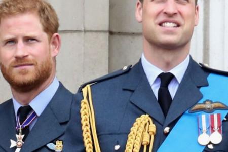 Princ Hari na meti kritika: Zar se tako rođenom bratu čestita rođendan?