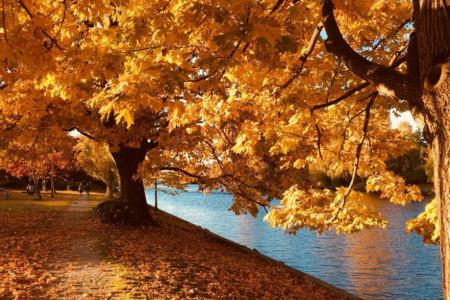 Spremite se na promene koje donosi prva nedelja oktobra