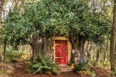 Vini Pu vas poziva u svoj skromni dom: Odsednite u kućici omiljenog mede (foto)